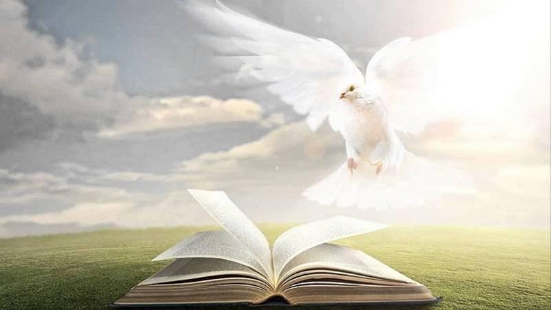 Série: Estudo do Espírito Santo (4)