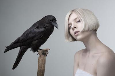 Download Lagu Aurora - Winter Bird