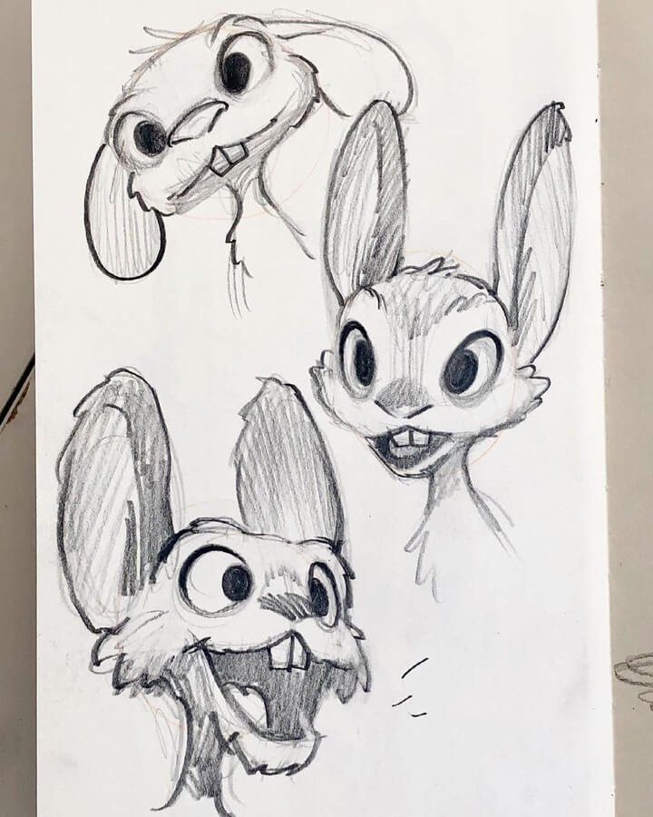 05-Rabbit-drawing-study-MS-Armstrong-www-designstack-co