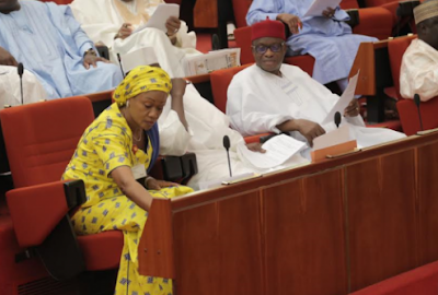 Image result for Senate rejects Special grant for Lagos State