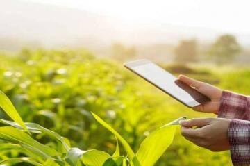 ई-पीक पाहणी ॲप I सांगली जिल्ह्यात एवढ्या हजार शेतकऱ्यांनी केली नोंदणी I खानापुर तालुक्यातील शेतकऱ्यांनी केले सर्वाधिक ॲप डाऊनलोड