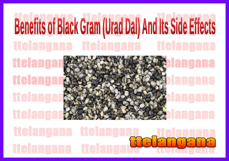 Benefits of Black Gram (Urad Dal) And Its Side Effects