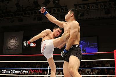Mixed Martial Arts (MMA)   Pengertian, Sejarah, Aturan, dan Teknik