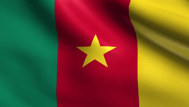 Cameroon-Womens-World-Cup-2019-Live-Updating-Flag