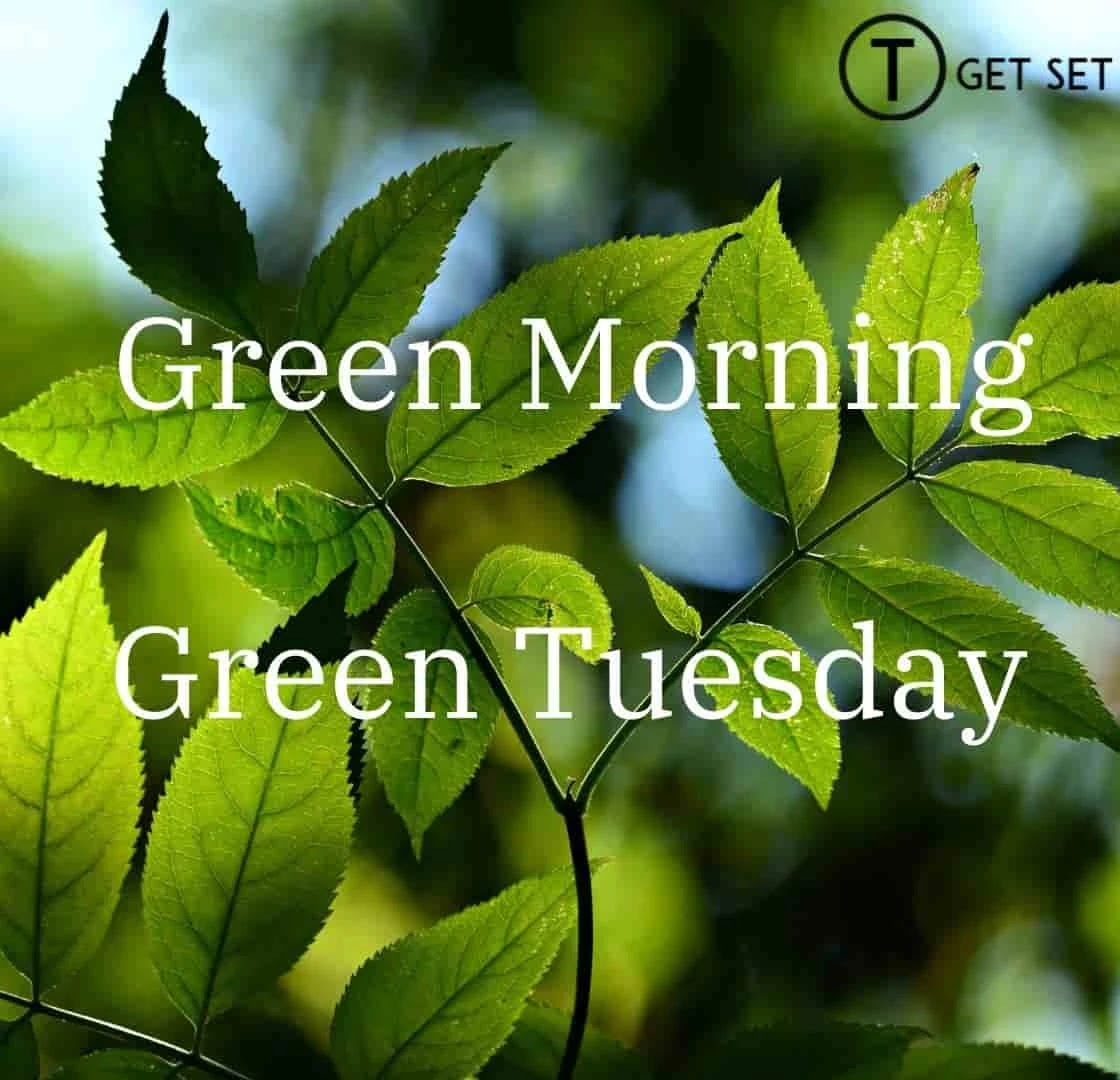 green-tuesday-green-morning-image