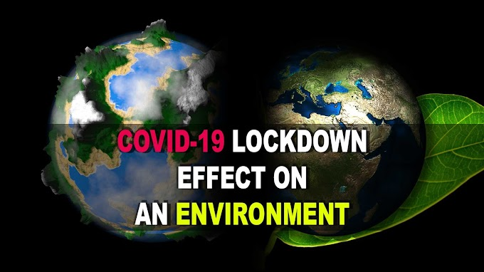 COVID-19 Lockdown effect on an environment