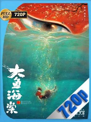 Big Fish and Begonia (2018)HD [720P] Latino [GoogleDrive] DizonHD