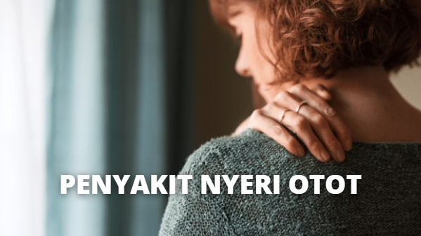 Penyakit Nyeri Otot : Pengertian, Penyebab, Penanganan di Rumah, Mencegah Nyeri Otot Pengertian Nyeri Otot Nyeri otot atau myalgia adalah rasa sakit atau nyeri yang muncul pada bagian otot. Ini adalah kondisi yang umum dan bisa terjadi pada semua orang. Nyeri otot biasanya terkait dengan tingkat ketegangan, terlalu banyak beraktivitas, atau cedera dari olahraga dan atau bekerja. Nyeri otot mulai terasa ketika secang melakukan aktivitas atau setelahnya.  Nyeri otot bisa dirasakan pada bagian mana pun karena hampir seluruh bagian tubuh memiliki jaringan otot dan biasanya tidak hanya melibatkan satu otot saja. Kondisi ini bisa melibatkan ligamen, tendon, dan fasia. Fasia adalah jaringan ikat yang menghubungkan otot dengan otot lain dan jaringan di sekitarnya seperti saraf dan pembuluh darah.  Penyebab Nyeri Otot Nyeri otot yang dirasakan seseorang sering kali menghilang hanya dalam beberapa hari, tapi kondisi ini bisa juga bertahan hingga berbulan-bulan. Nyeri otot bisa juga menjadi tanda dari kondisi lain yang berdampak kepada seluruh bagian tubuh, seperti terkena infeksi dan menderita penyakit lupus (kelainan yang memengaruhi jaringan ikat yang ada di seluruh tubuh).  Berikut ini beberapa penyebab umum yang bisa mengakibatkan munculnya nyeri otot : Terlalu memaksakan otot saat beraktivitas fisik secara berlebih, cepat, dan terlalu sering Otot terkilir dan tegang karena cedera atau trauma Ketegangan atau stres yang terjadi pada salah satu atau beberapa bagian tubuh  Nyeri otot bisa terjadi akibat penyakit atau kondisi yang dengan sebagai berikut : Fibromyalgia Kondisi pada saat otot dan jaringan lunak akan terasa sakit saat disentuh, disertai dengan kesulitan tidur, kelelahan, dan sakit kepala. Dermatomiositis Penyakit peradangan yang cukup langka, disertai tanda-tanda ruam dan otot yang terasa lemas Lupus Ini adalah penyakit peradangan kronis di mana sistem kekebalan tubuh keliru menyerang jaringan dan organ tubuhnya sendiri. Infeksi Infeksi yang disebabkan oleh bakt