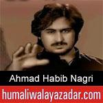 https://www.humaliwalayazadar.com/2019/09/ahmad-habib-nagri-nohay-2020.html