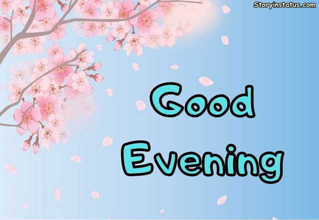 good evening with flowers images