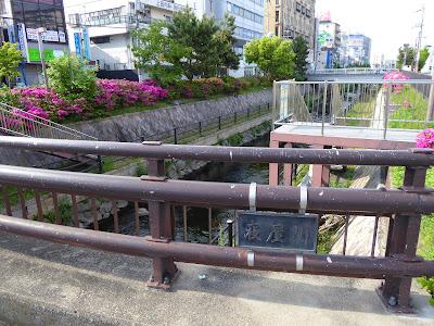 寝屋川市駅前を流れる寝屋川(一級河川)