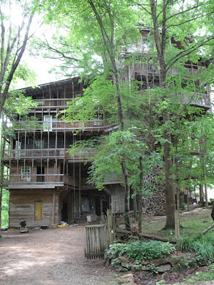 The World's Biggest Treehouse (14) 3