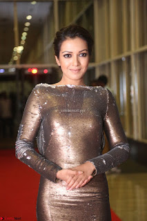 Actress Catherine Tresa in Golden Skin Tight Backless Gown at Gautam Nanda music launchi ~ Exclusive Celebrities Galleries 064.JPG