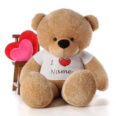 adorable personalized Valentine's Day Teddy Bear