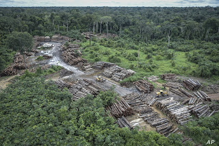 climate-change-brazil