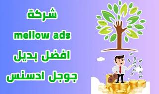 شرح شركة mellow ads افضل بديل جوجل ادسنس موقع ميلو ادس