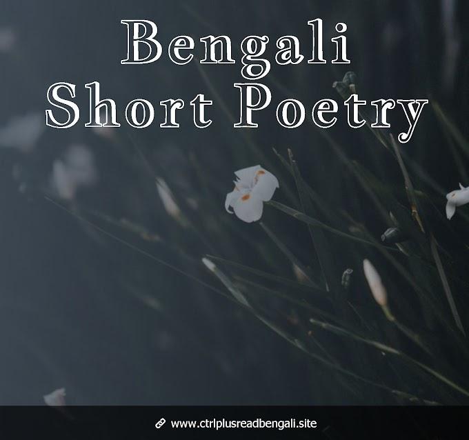 আবার দেখা হল আমাদের - Bengali Short Poetry
