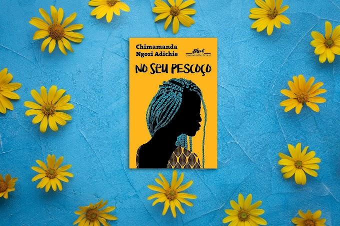 No Seu Pescoço | Chimamanda Ngozi Adichie