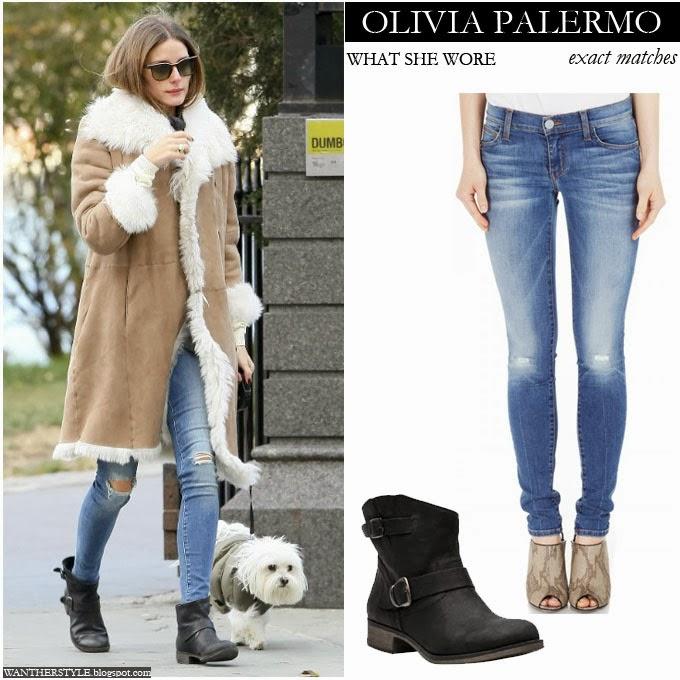 Dog Wearing Winter Coat
