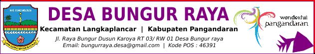 Desa Bungur Raya