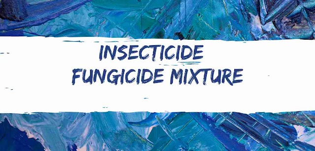 INSECTICIDE + FUNGICIDE Mixture (Flubendiamide 3.5% + Hexaconazole 5% WDG)