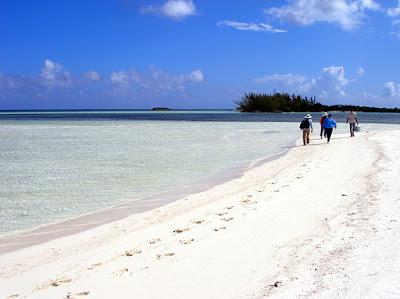 Marine sientists walking on pristine beach in Inagua, Bahamas.