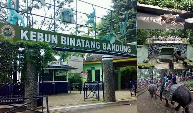 1. Kebun Binatang Bandung
