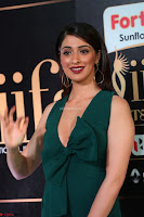 Laxmi Rai in a Deep neck Beautiful Green Gown Cute Actress Laxmi Rai ~  093.JPG