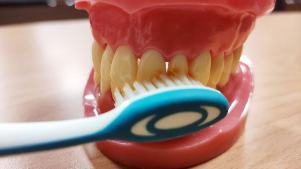 口腔保健好習慣不怕蛀牙 台中慈濟醫院籲牙齒塗氟保養
