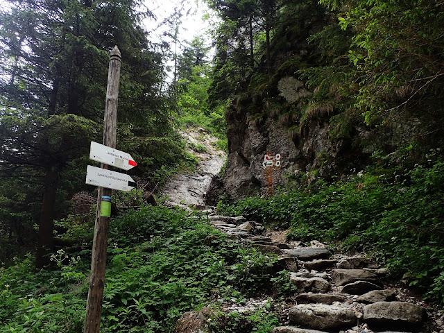 Brama Raptawicka - ścieżki prowadzące do Jaskiń Pawlikowskiego