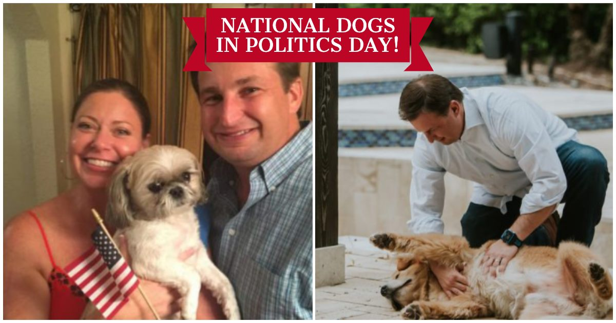 National Dogs in Politics Day Wishes Sweet Images