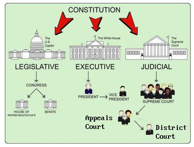 U S Government Structure Diagram Cause And Effect Tree Dredd Blog: The Germ Theory - Of