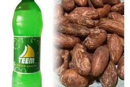 Soak Bitter Kola In Bitter Lemon For 3 Days, Drink Twice Daily To Treat These Disease