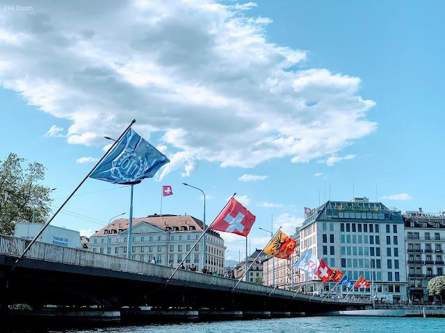 Geneva-brdige