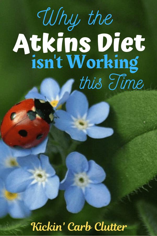 Pinterest Image: Ladybug on blue flowers