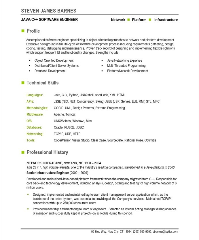 Developer resume example
