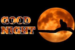 Free good night image, beautiful good night image