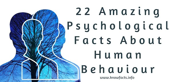 22 Amazing Psychological Facts About Human Behaviour