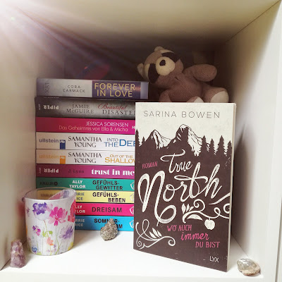 Cover von True North by Sarina Bowen