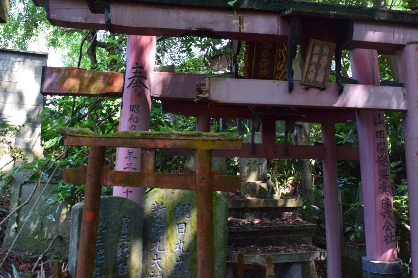 Abandoned Shinto Shrine Kyoto