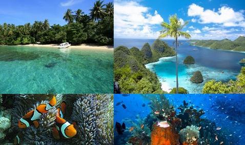 Tempat wisata taman nasional teluk cendrawasih papua
