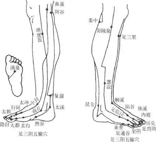 養腿=養命!春天做腿的8大好處!(維護氣血運行)