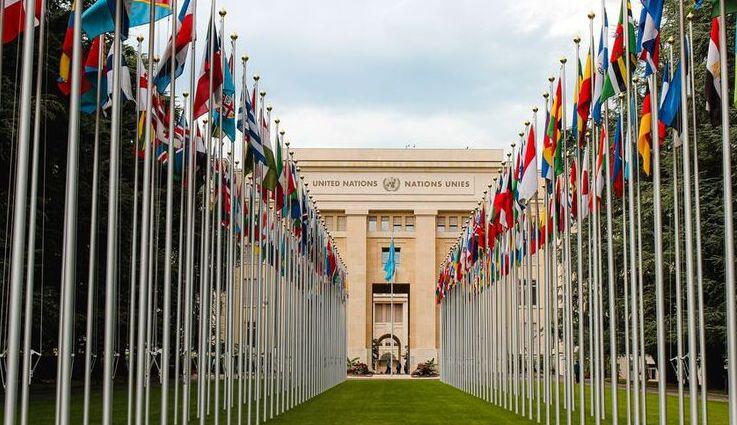 Declaración de Consenso de Ginebra
