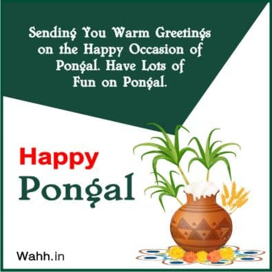pongal food quotes