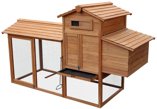 How to build your own chicken coop