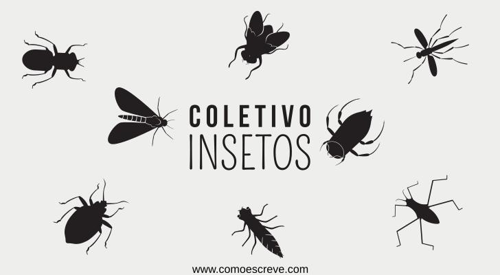 Coletivos de insetos: Exemplos e exercício