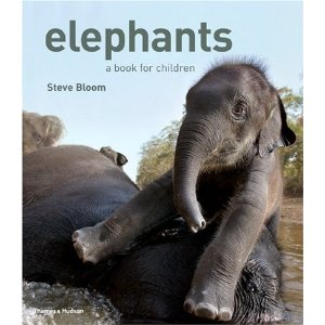 elephants a book for children by steve bloom