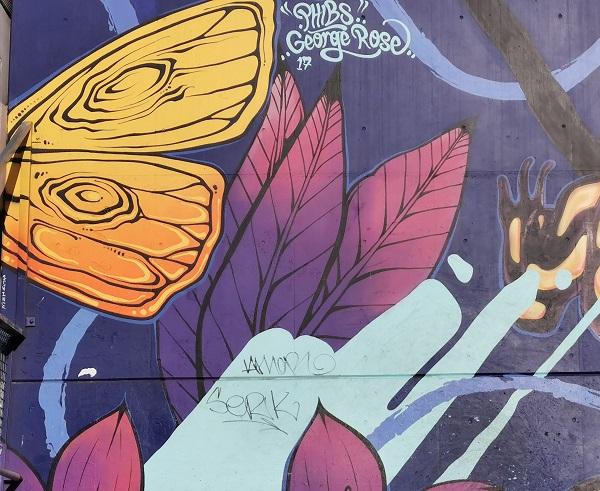 Canberra Street art   Mural by Phibs & George Rose