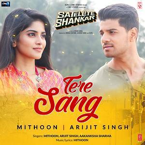 Tere Sang (Satellite Shankar)
