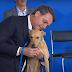 Bolsonaro sanciona lei que aumenta pena por maus-tratos a cães e gatos